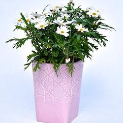 Blomkruka Diamant låg från Cult design. Färg: Rosa. Mått: Dia. 13,5 cm. H 16 cm.
