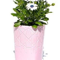 Blomkruka Diamant hög från Cult design. Färg: Rosa. Mått: Dia. 13,5 cm. H 22 cm.