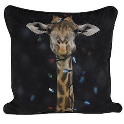 Giraff ett kuddfodral i sammet med LED belysning, art.nr 9652-47-009. Färg: Svart.