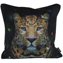 Leopard ett kuddfodral i sammet med LED belysning, art.nr 9651-47-009. Färg: Svart.