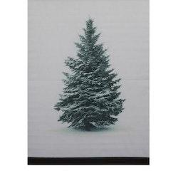 Gran en härlig julbonad, mått 50 x 70 cm, art,nr 9402-77-007. Färg: Vit med en dekorativ vintergran.