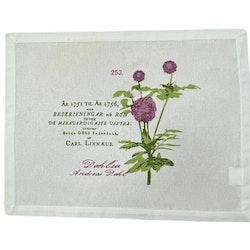 Linné en tablett i bomull. Färg: Vit med ett tryck i rosa och grönt.