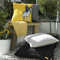 Terrie en prydnadskudde i sammet från Noble house. Färg: Gul med en hundbild och svart sammetsbaksida.