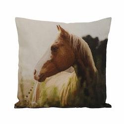 Horse ett kuddfodral med ett digitaltryck. Färg: Multifärgat digitaltryck med en baksida i off-white.