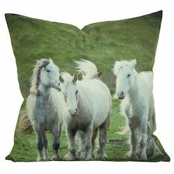 Starlet ett kuddfodral i sammet med ett digitaltryck med vita hästar. Färg: Multifärgat digitaltryck med en baksida i vitt.
