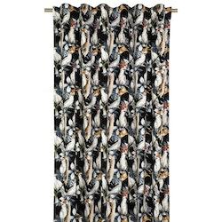 Kakau ett underbart gardinset i sammet med kakaduor i mönstret och multiband. Färg: Svart botten med vita kakaduor med gröna och grå toner.