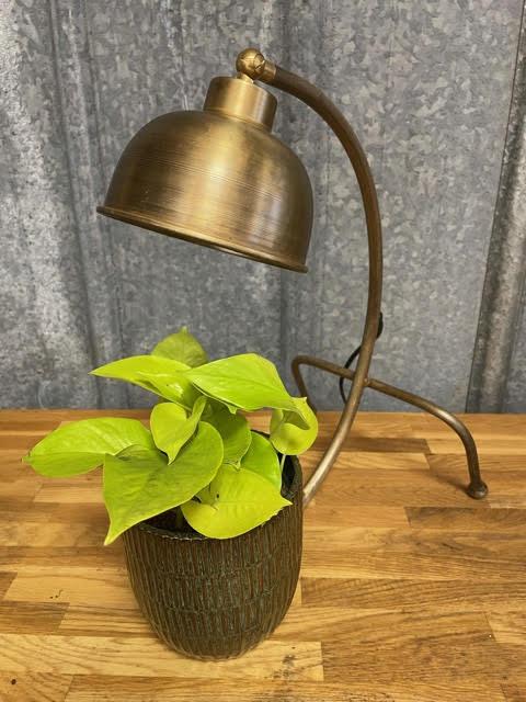 Bordslampa Treben