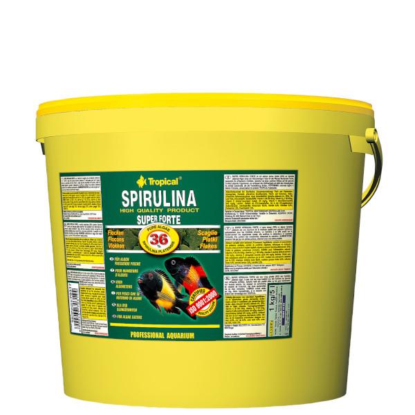 Super Spirulina Forte (36%) 11 liter