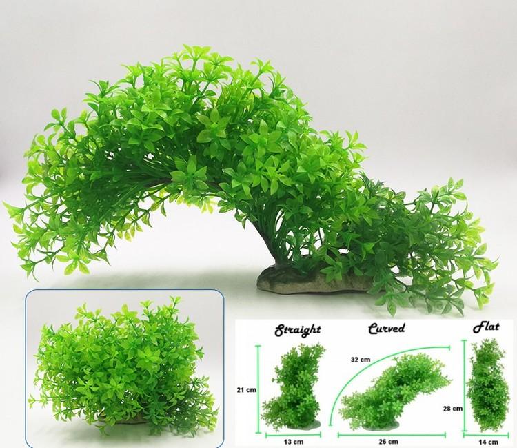 Plastväxt Bacopa 12-21 cm A