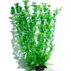 Plastväxt Spikewort 55 cm