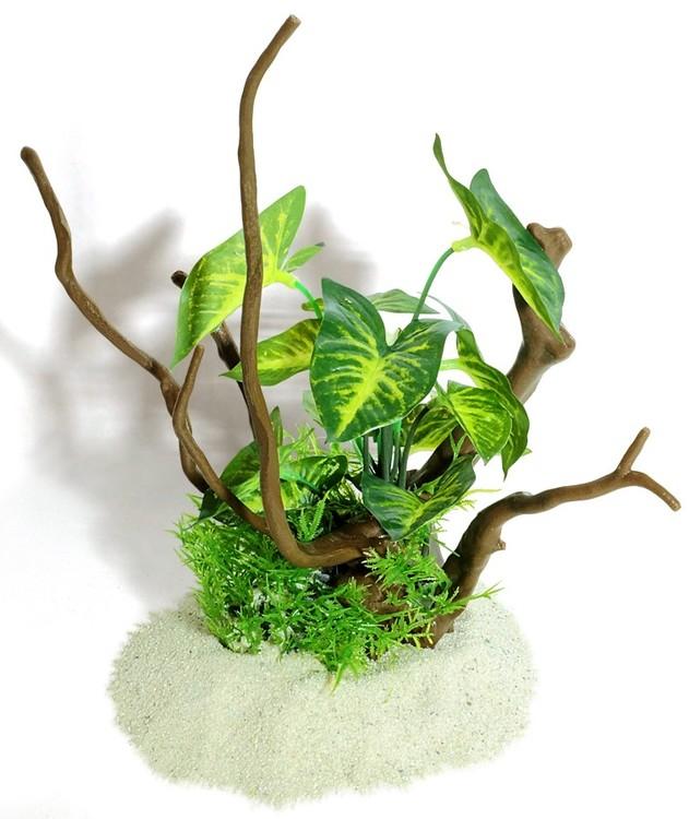 Plastväxt på rot Gracilis 26 cm