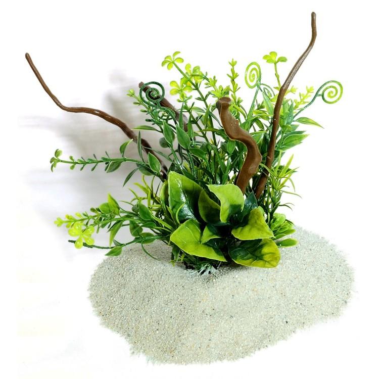Plastväxt på rot Petite leaves 16 cm