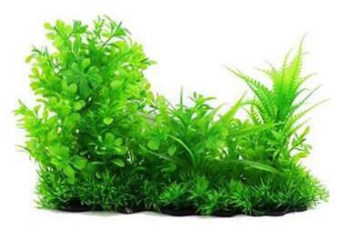 Plastväxt Lush green 18 cm