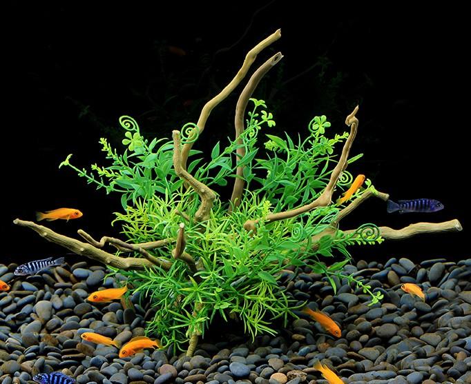 Plastväxt på rot Petite leaves 26 cm