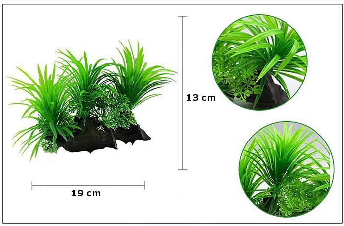 Plastväxt på rot Sagittaria 13 cm A