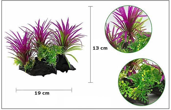 Plastväxt på rot Magenta 13 cm A