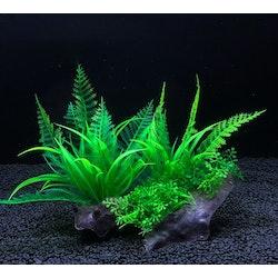 Plastväxt på rot Fern 15 cm