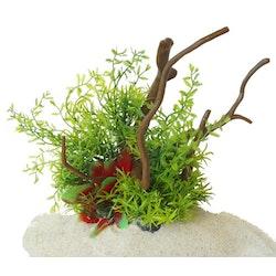 Plastväxt på rot Petite leaves 22 cm