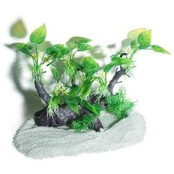 Plastväxt på rot Anubias 19 cm