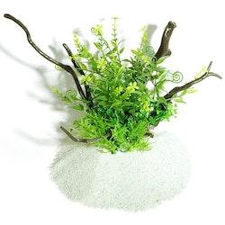 Plastväxt på rot Petite leaves 21 cm