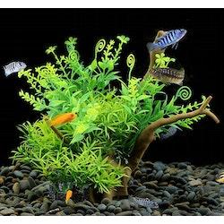 Plastväxt på rot Petite leaves 17 cm