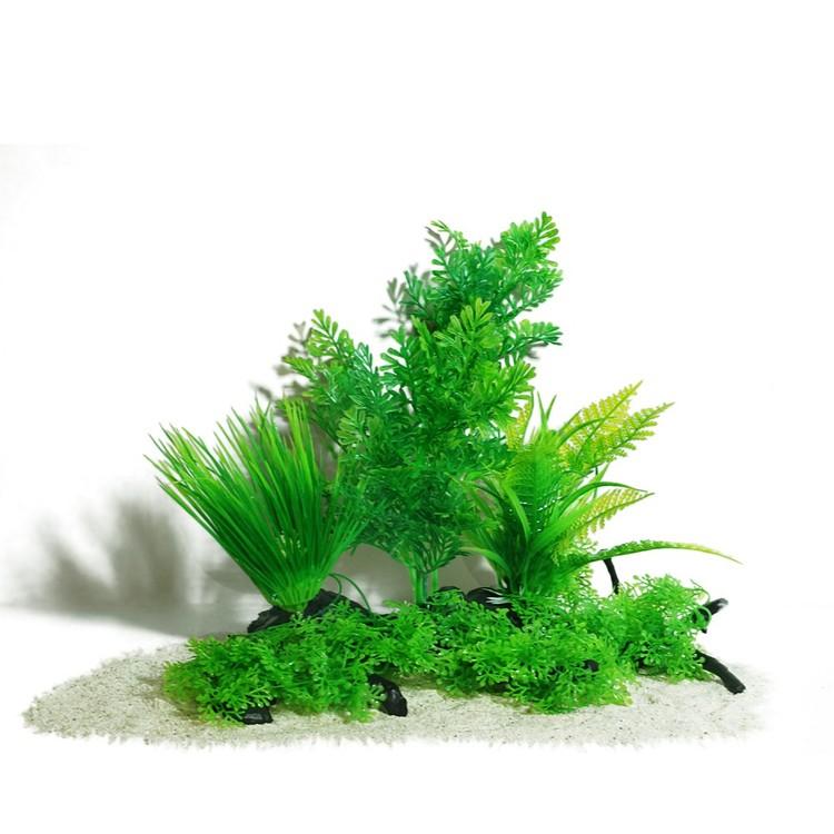 Plastväxt på rot Difformis 25 cm