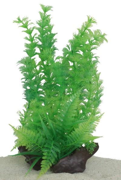 Plastväxt på rot Cabomba 30 cm