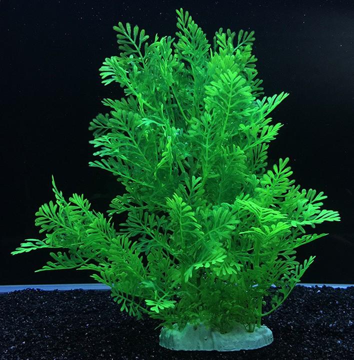 Plastväxt Difformis 27 cm