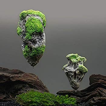 Floating rock small A