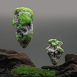 Floating rock small