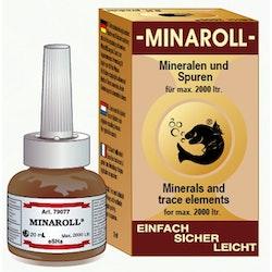 eSHa MINAROLL