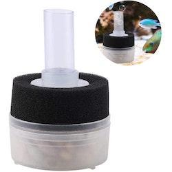 Box filter med filtersvamp och pimpsten - mini