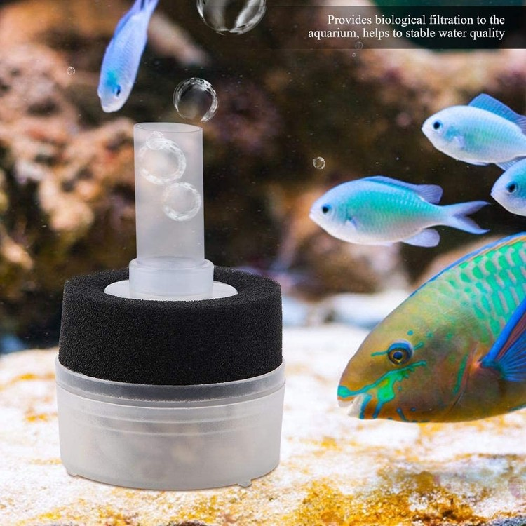 Box filter med filtersvamp och pimpsten - mini B