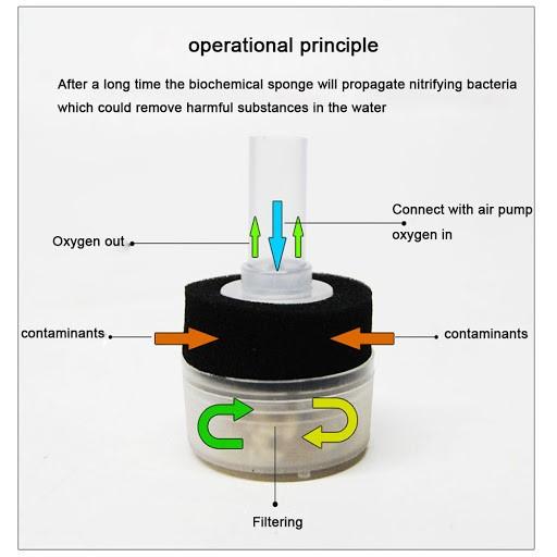 Box filter med filtersvamp och pimpsten - mini E