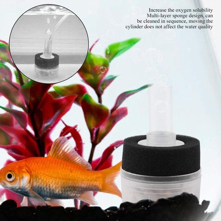 Box filter med filtersvamp och pimpsten - mini I