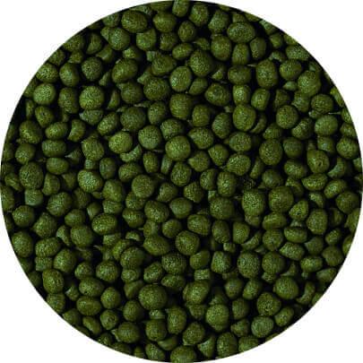 HERBIVORE - medium pellet 10 liter A