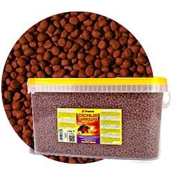 CARNIVORE - medium pellet 5 liter