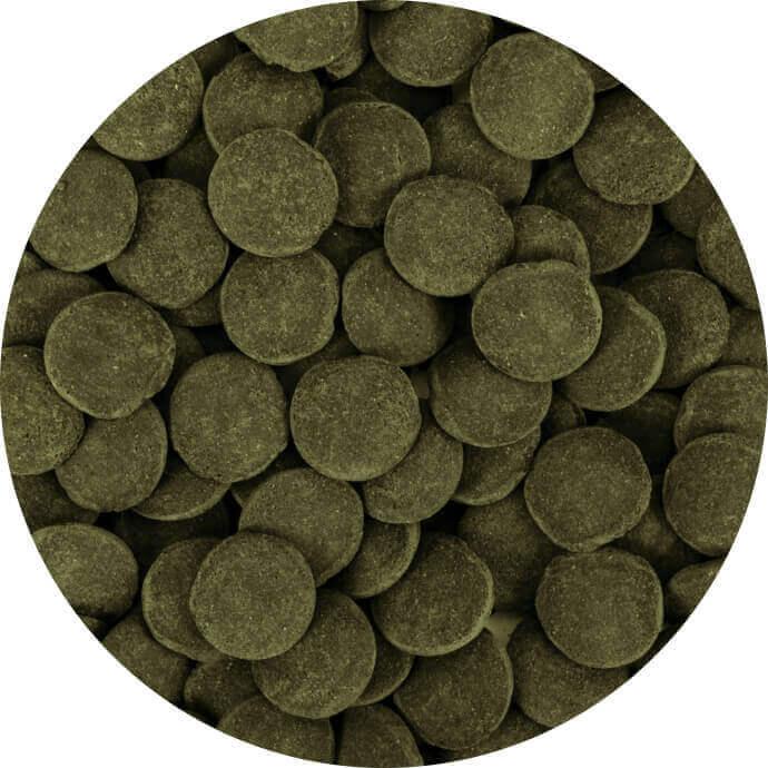 Hi-Algae Discs XXL 1000 ml B