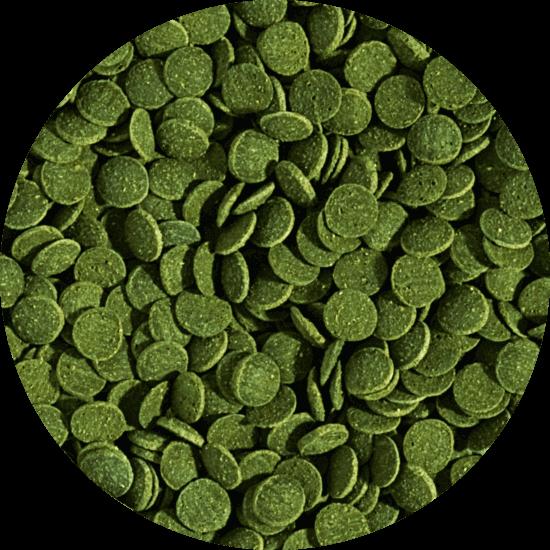 Mini wafers spirulina 6% - Lösvikt