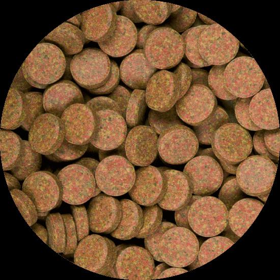Supervit Tablets A 250 ml B