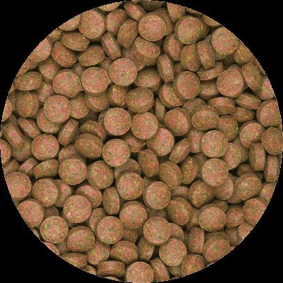 Supervit Tablets B 250 ml B