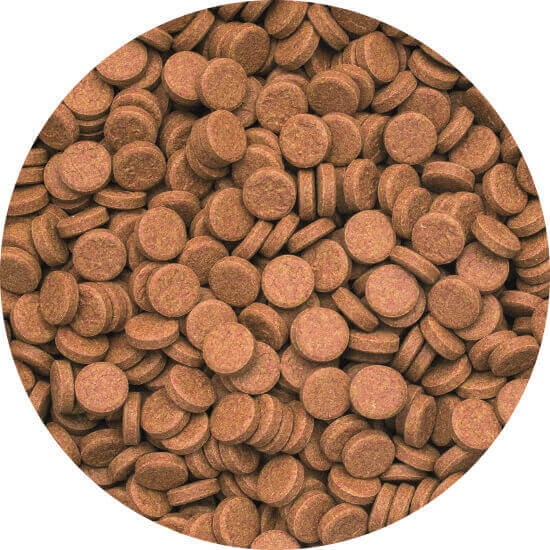 Vitality & Color Tablets A 50 ml A