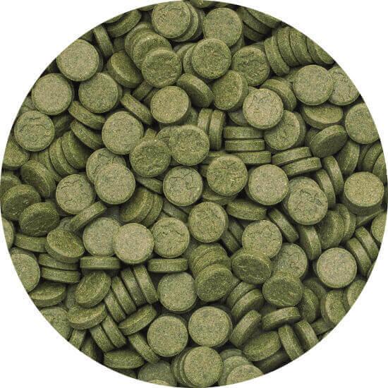 3-Algae Tablets A 250 ml B