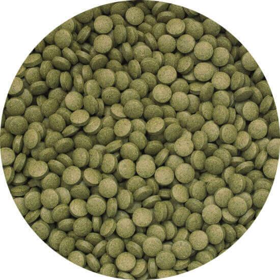 3-Algae Tablets B 50 ml A