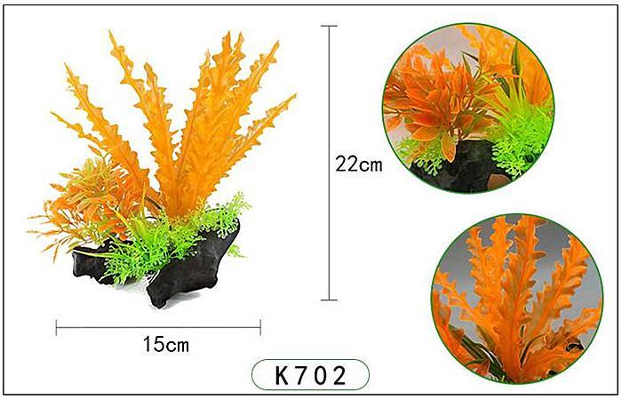 Plastväxt på rot Cryptocoryne orange 21 cm A