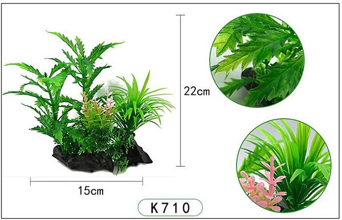 Plastväxt Pinnatifida 20 cm A