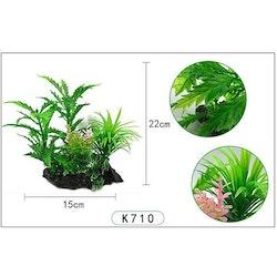 Plastväxt Pinnatifida 20 cm