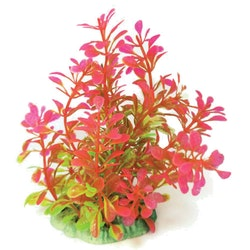 Plastväxt Bacopa rosa / gröna detaljer 13 cm