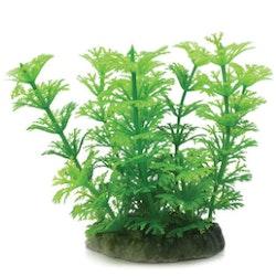 Plastväxt Cabomba grön 10 cm
