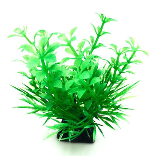 Plastväxt Bacopa 9 cm